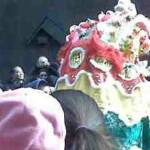 Look at the Chinese dragon ! Happy New Year!